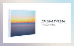 banner_calling
