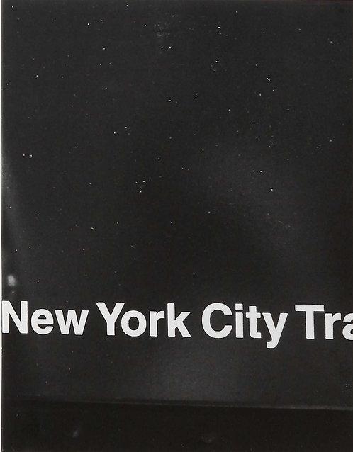 RIP ZINGER NEW YORK CITY/タナカ トモノリ