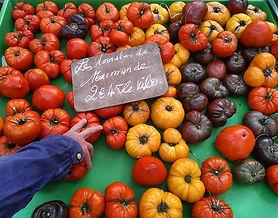 #tomaten #tomate #tomato #pomodoro #orga