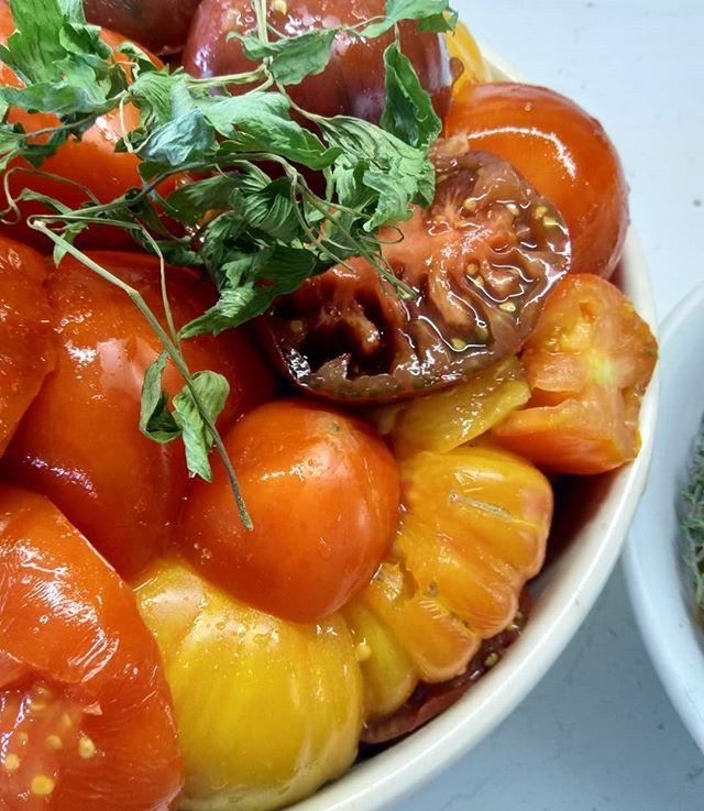 #ketchup #tomatoketchup #tomat #tomatos