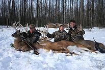 whitetail deer hunting texas