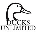 ducks unlimited, duck huntng peru. chaku peru