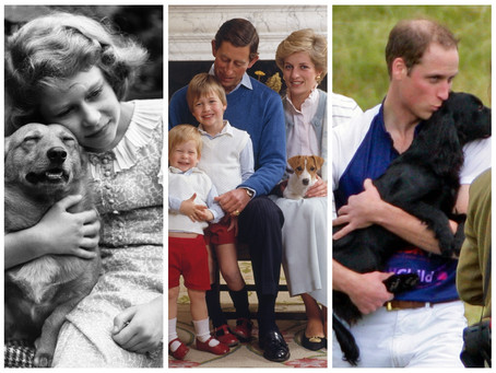 Dogs of the British royal family