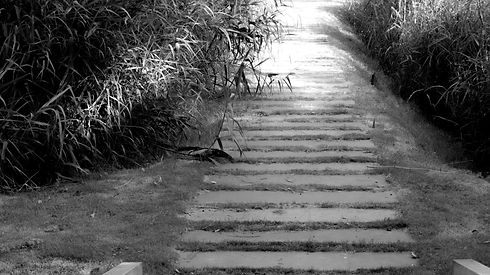 gray%20concrete%20staircase%20between%20green%20grass%20during%20daytime_edited.jpg