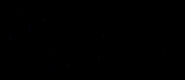 Nisa La Bella_Logo-21.png