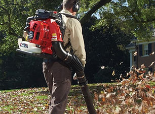 homepage-promobox-backpack-blower.jpg