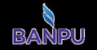 banpu_edited.png