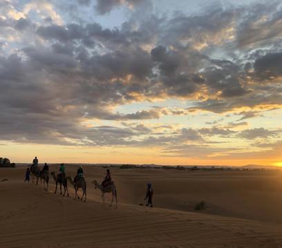 Sunset Camel trek through the Sahara