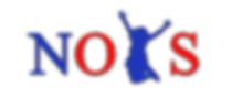 NOYS logo - use.png