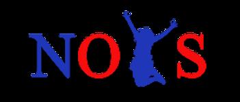 NOYS logo - use.png