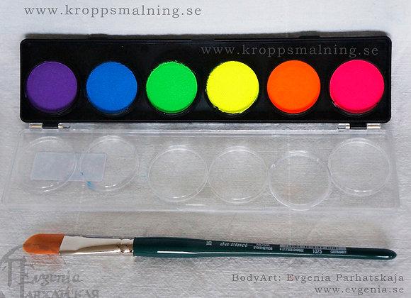 DFX 6 paletten NEON