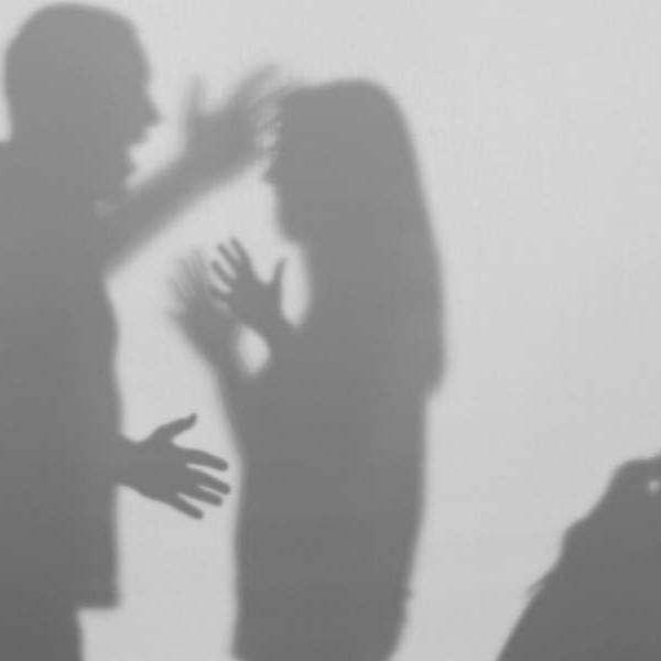 Mediation and Intimate Partner Violence Online Training