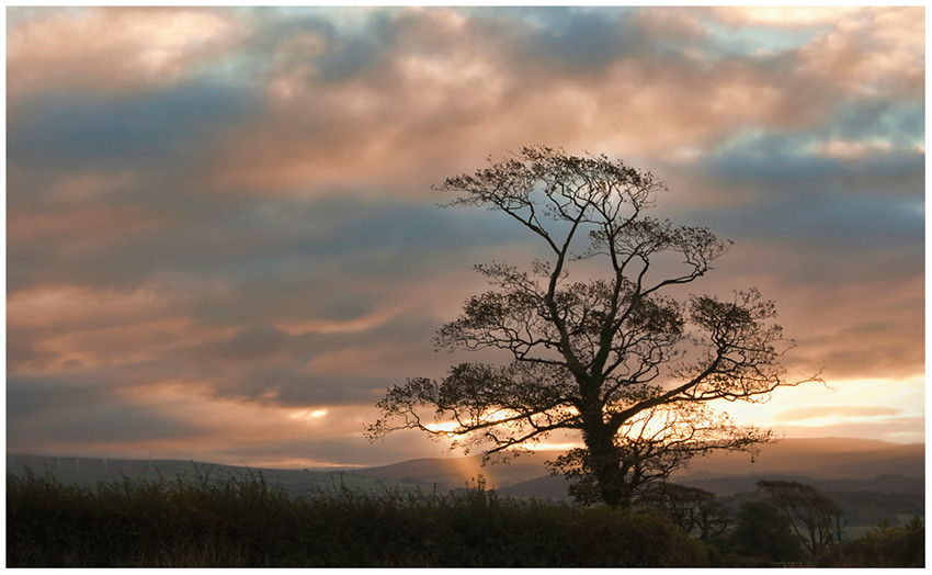 Morning sunrise at Cross roads.