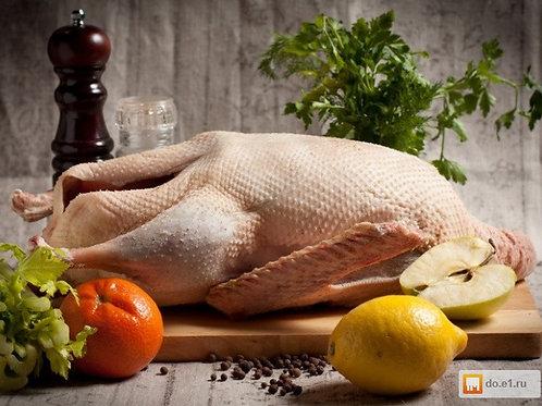 Мясо утки (тушка 1,5-3,5кг)