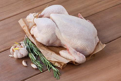 """Цыпленок домашний """"Корнишон M"""""""