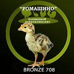Bronze 708.jpg