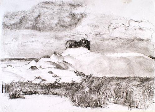 Drawing 0081