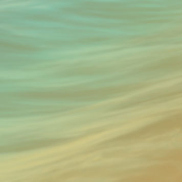 Long Banner Crop 2.jpg