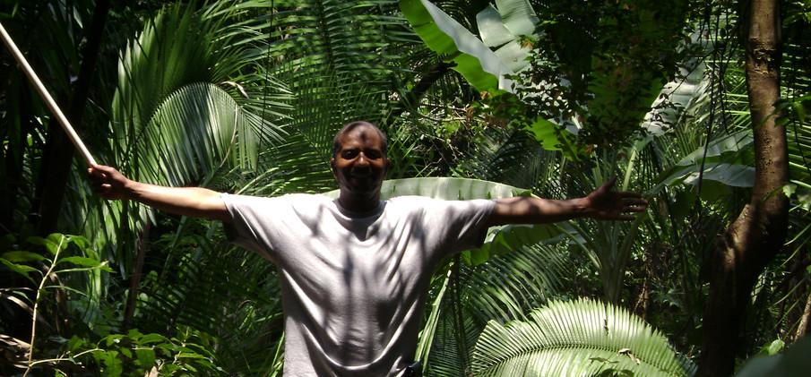Honduras Jungle