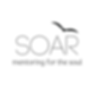 SOAR (1).png