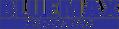 bmt-darkerBLUEneedscorrection-logo-bluemax-long-logo1.png