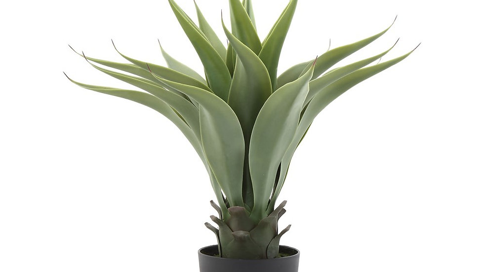 """22""""H Faux Agave Plant in Pot"""