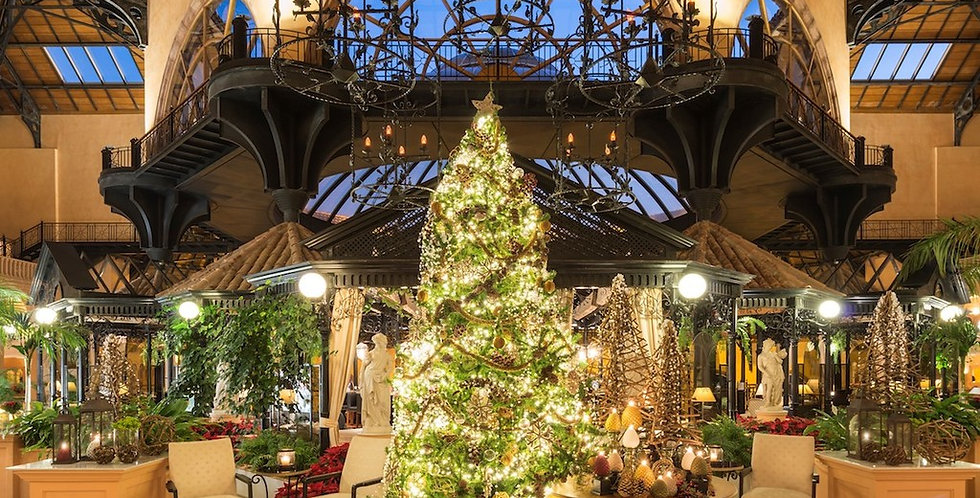 Hotel Collections for the Christmas Season