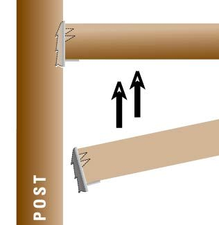 horizontal graphic1 cropped.jpg
