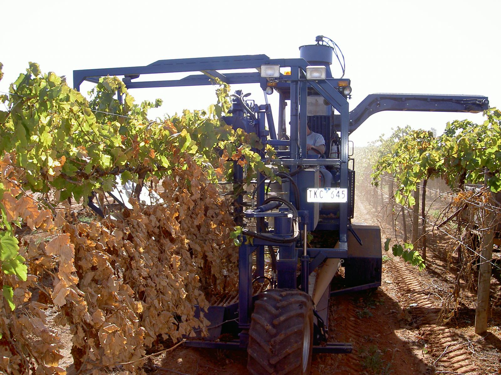 Korvan Harvester in Action