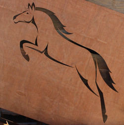 Horse jumping and butterflies First Projects 2014  (1)