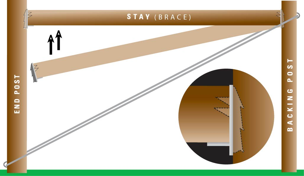 Vicebite Horizontal Graphic