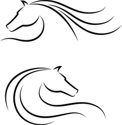 Horse sample image_1487562.jpg