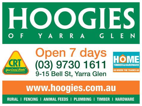 Hoogies ad.jpg