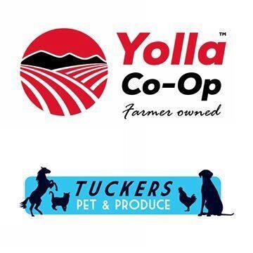 Yolla Co-Op