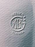 logo alegra_edited.jpg