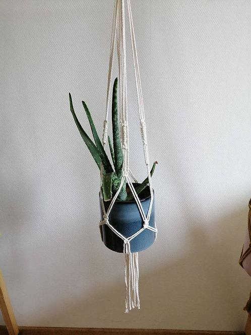 Kit suspension pour plante