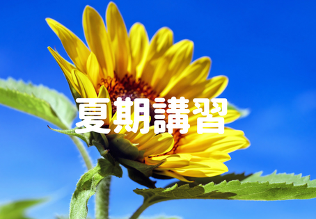 夏期講習開始まで1週間!!