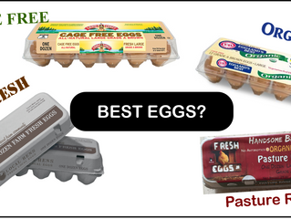 Choosing The Most Egg-cellent Eggs