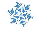 snowflake 2.jpg