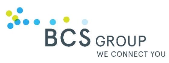 Logo BCS Empire-Network_