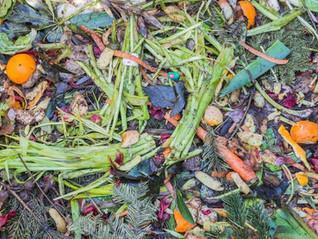 Valorisation des biodéchets & coproduits :  tour d'horizon des filières à haute valeur ajoutée