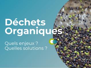[VIDEO] Déchets organiques : quels enjeux & quelles solutions ?