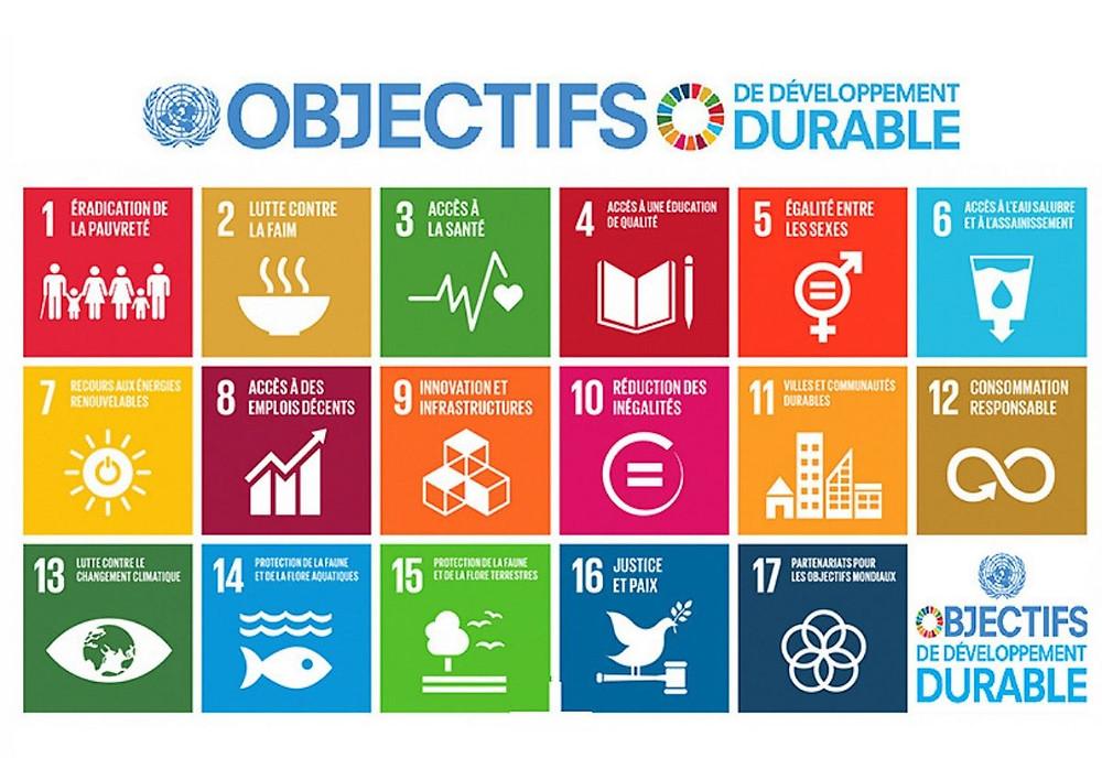 ODD Objectifs Développement Durable RSE