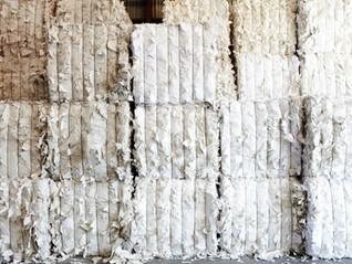 Contexte alarmiste sur la valorisation des plastiques et cartons : comment tirer son épingle du jeu