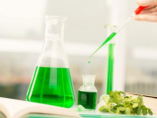 Bioraffineries environnementales : vers une valorisation complète des biodéchets ?