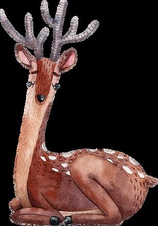 Drawing of Reindeer
