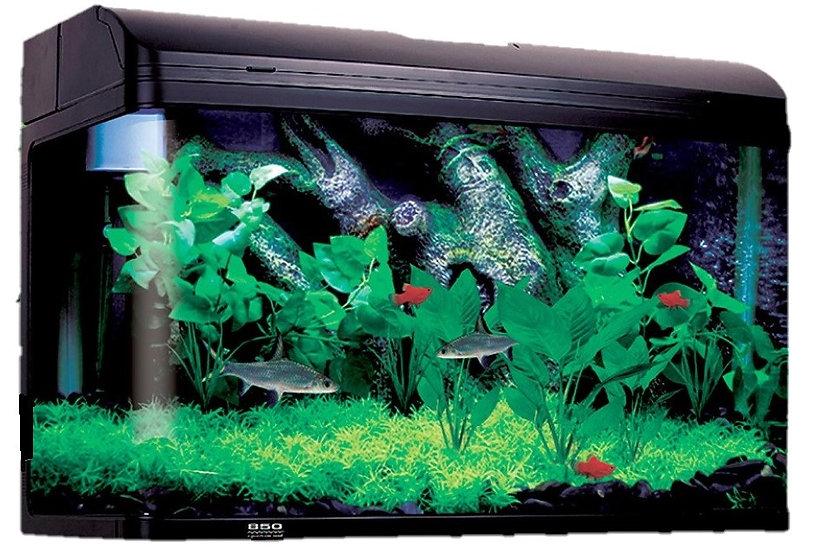 Aqua One AquaStyle 850 Fish Tank / Aquarium