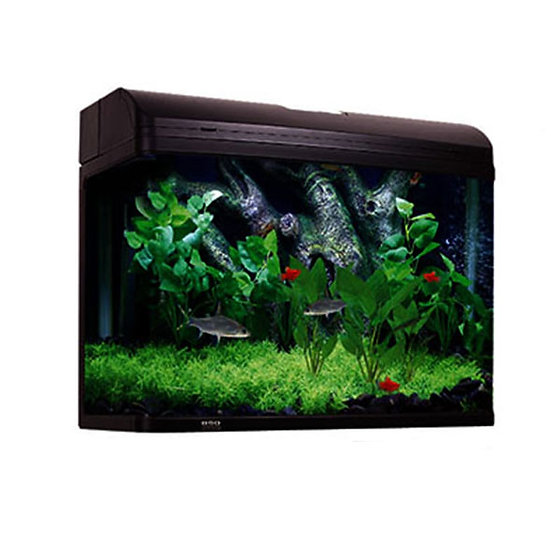 fish tanks for sale Sydney