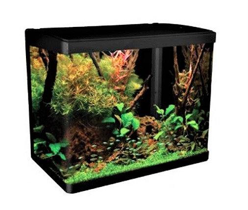Aqua One LifeStyle 52 Litre Aquarium Fish Tank