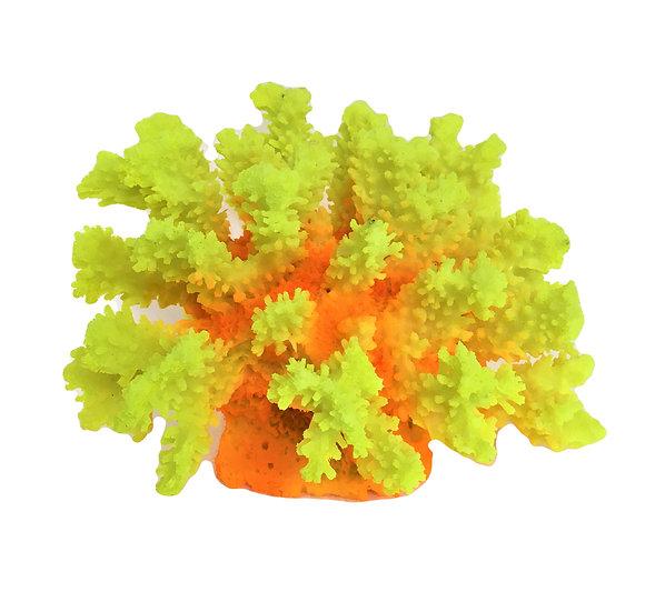 Orange Yellow Coral Nest (19cm)